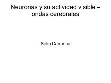 Neurociencias – Las Neuronas su actividad y conexiones