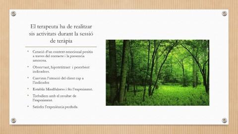 Segona part presentació practicum
