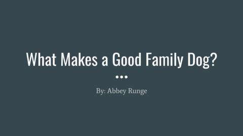 Abbey Runge Slidecast 2