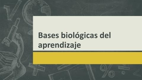 Bases biológicas del aprendizaje