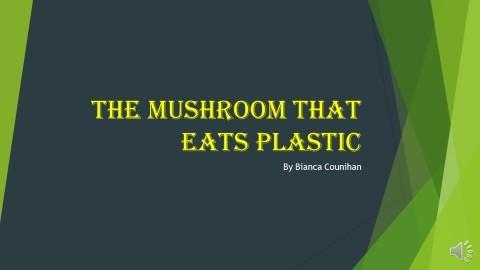 The plastic eating mushroom