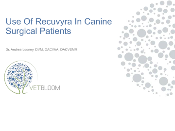 Using Recuvyra in Canine Surgical Patients